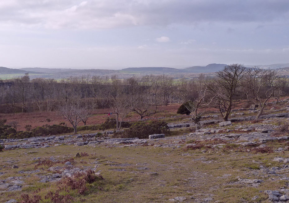 Holme Park Quarry Can Be Seen Through The Trees And Arnside Knott To Right